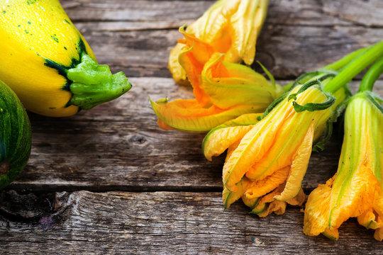 fresh, organic flowers of zucchini