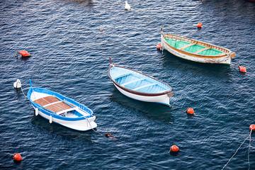 Piccole barche da pesca alle cinque terre