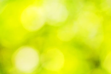 Background with yellow and green spots