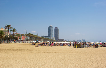 Sandy, palm-fringed beach Barceloneta, Barcelona, Spain