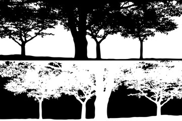Black and white trees scene silhouette vector.