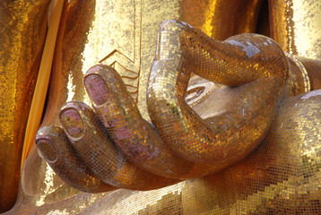 the hand of buddha image