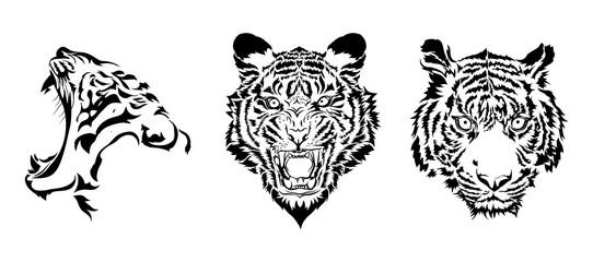 tiger heads in black vector