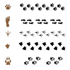 set of  brushes in the form of animal tracks