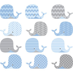 Blue and Grey Cute Whale Collections
