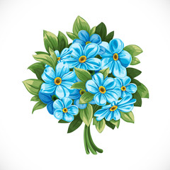 Bouquet of blue forget-me-not