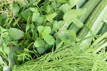 Vegetable garden home