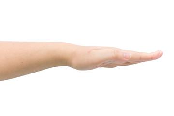 Female hand on isolated background.
