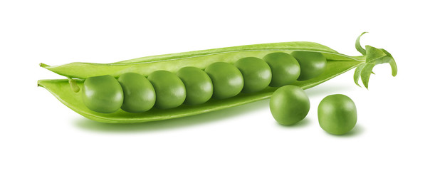 Single pea pod isolated on white background