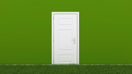 white door with grass