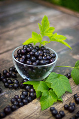 black currant in a glass bowl transparent scattered on the old w