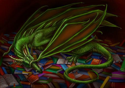 Дракон спит на книгах