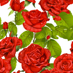 Luxury seamless pattern of red roses on a white background