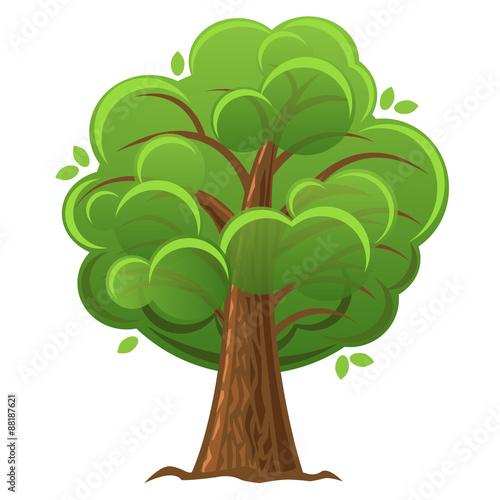 Leaves Oak White Stock Images RoyaltyFree Images