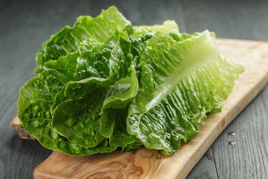 fresh romain green salad leaves on olive board