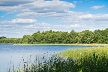 Landscape with a Lake, Trees and Clouds on a Sunny Day, Belarus