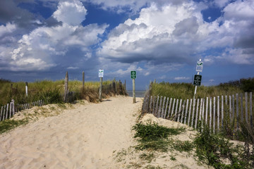 Pathway to Beach