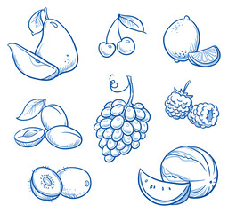 Set of different fruits: pear, melon, grape, kiwi, lemon, cherry, plum, raspberry, Hand drawn doodle vector illustration.