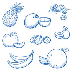 Set of different fruits: orange, coco nut, banana, apple, strawberry, apricot, blueberry, pineapple.  Hand drawn doodle vector illustration.