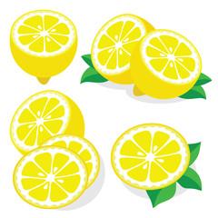Lemon vector illustrations