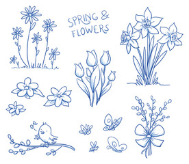 Spring and summer flower collection, with tulips, narcissus, singing bird on a pussy willow brach, marguerite, butterflies and bee. Hand drawn vector illustration.