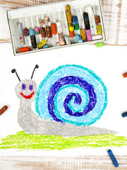 colorful drawing: snail with a shell