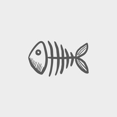 Fish skeleton sketch icon