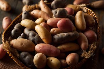 Raw Organic Fingerling Potatoes