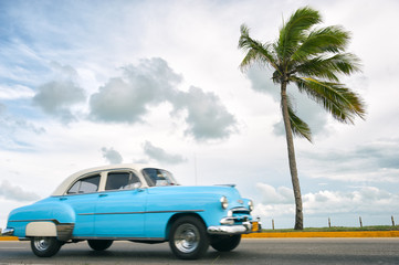 Printed roller blinds Vintage cars Classic vintage American car drives along a coastal road next to single palm tree in Varadero, Cuba