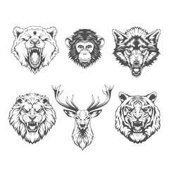 Animals heads set