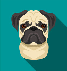 Vector pug dog flat cartoon illustration