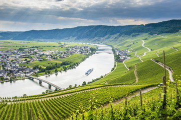 Cruise ship passing the riverbend at Minnheim, Moselle Valley, Rhineland-Palatinate, Germany, Europe