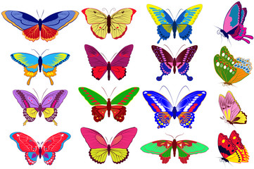 Vector set of colorfull  butterflies