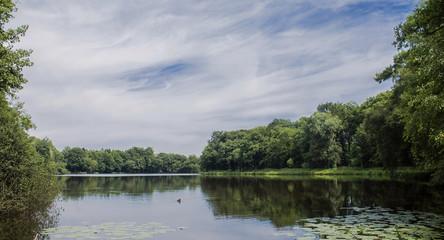 Sommer See Landschaft