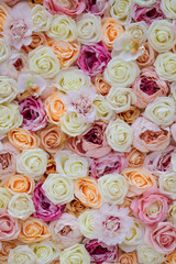 Background of Roses. Decorations at the Wedding Ceremony.
