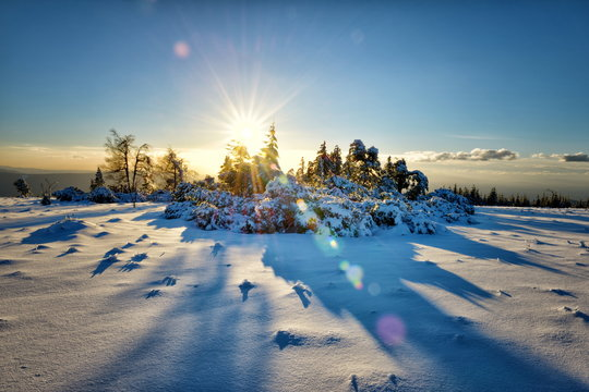 Winter landscape, an HDR image with deep snow and sun, captured on Schliffkopf mountain in Northern Black Forest, Baden-Wurttemberg, Germany