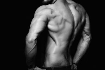 Muscular back and sexy torso of young man. Perfect body, muscles