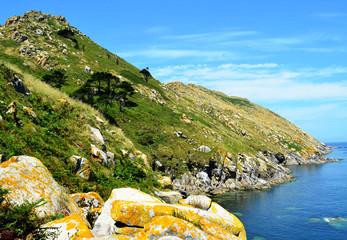 Monte Agudo (Cies Islands, Spain)