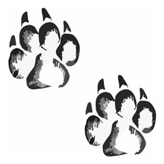 Footprints of a big cat4-vector