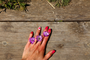 Hand nails flowers