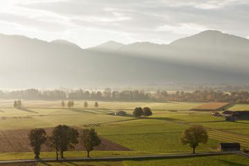 Kochelmoos Moor, Hay Huts, Bavarian Alps, Upper Bavaria, Bavaria, Germany, Europe