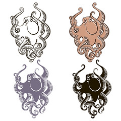 Set of  octopus  isolated on white background.