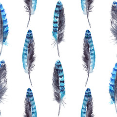 Watercolor blue jay feather black blue isolated pattern background
