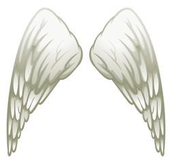 Angel wings on white