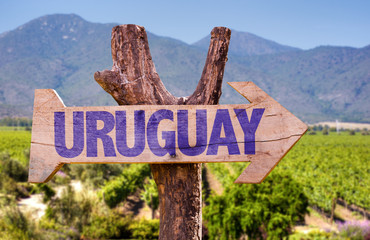 Uruguay wooden sign with winery background