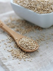 Whole Grain Quinoa on Bamboo Spoon