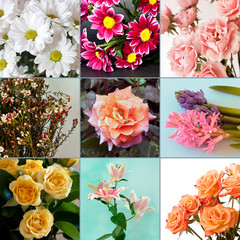 A collage of flower photos, including roses, lilies, daisies and hyacinths