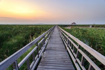 Wooden bridge cross around marsh in sunset time at Sam Roi Yot National Park,Thailand