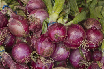Red Onions Farmers Market