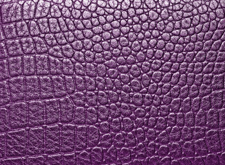 Wall Mural - Crocodile leather texture background